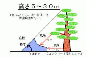 木陰の避難