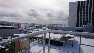 名古屋市内も10cm近い積雪 (当社支店より)
