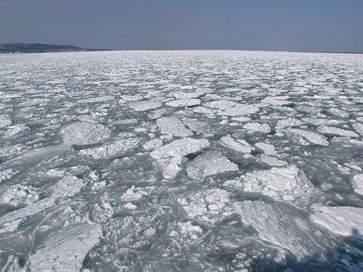 これぞ絶景!この時期、最北の地で観るといえば「流氷」